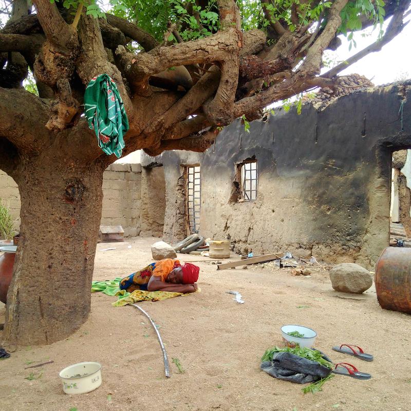 Mama slept under tree site